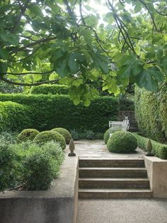 Vicki Archer's gorgeous French garden, from her bl.- Vicki Archer's gorgeous French garden, from her bl… Formal Gardens, Small Gardens, Outdoor Gardens, Modern Gardens, Indoor Garden, Garden Plants, Pot Jardin, Garden Steps, Garden Hedges