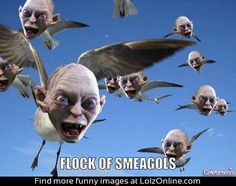 Just a flock of Smeagols | Lolz Online
