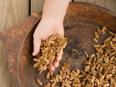 How to Collect and Harvest Seeds >> http://www.diynetwork.com/how-to/outdoors/gardening/how-to-harvest-seeds?soc=pinterest