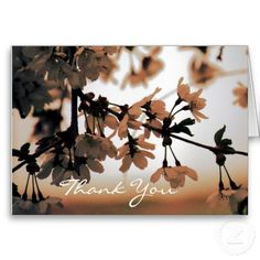 Soft Light Peach Thank You Card ~   These beautiful cards feature a close up photograph of tree blossoms in a warm peach tone.