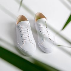 Simple white sneakers from natural and sustainable materials. Our Baan Sneaker in white organic cotton canvas. Canvas Sneakers, All White, White Sneakers, Cotton Canvas, Sustainability, Organic Cotton, Kicks, Campaign, Fashion Outfits