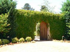 ARCH WAYS IN MY garden | my own garden door inside. I was thinking of building an archway ...