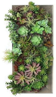 Wall Piece, Faux - Arrangements - Floral & Greenery - Home Accents - Decor One Kings Lane Mixed Succulents Wall Piece - FauxOne Kings Lane Mixed Succulents Wall Piece - Faux Artificial Succulents, Faux Succulents, Faux Plants, Succulent Wall Art, Plant Wall, Plant Decor, Succulent Gardening, Planting Succulents, Succulent Planters
