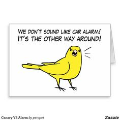 Canary VS Alarm Greeting Card. A cute yellow canary drawing protesting people that think canaries sound like car alarm. He said that it's the other way around. These merchandises will make perfect gifts for canary lovers, parents and breeders. #canary #canaries #ilovebirds #birdcartoon #canaryillustration #petbird #birdjokes #funnybirds #littlecutebird #yellowbird