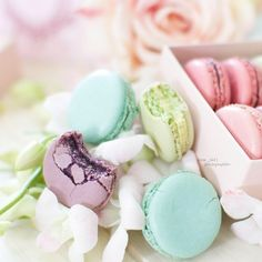 #macarons w/bites.