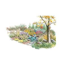 A Haven for Birds. This large plan is big enough to provide for wildlife throughout the year. Trees and shrubs provide cover, a spot to nest, and delicious fruits. The perennials in this plan offer tasty seeds. Garden size: 24 by 23 feet.