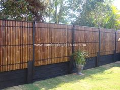 bamboo fencing bamboo fence panels i love this. Black Bedroom Furniture Sets. Home Design Ideas