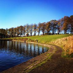 Autumn in Inverleith Park, Edinburgh.