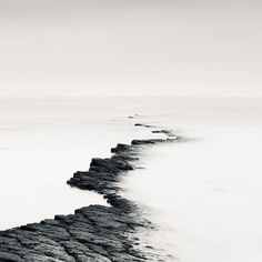 Graphic Landscapes - organic texture inspiration; black & white nature photography