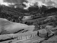 interesting details in photo   | Ansel Adams