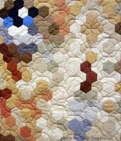 "closeup, ""Mickey Blue Eyes"" (pixelated dog quilt) by Julia . Wood (Alabama).  Hand-pieced hexagons. 2014 AQS show, award."