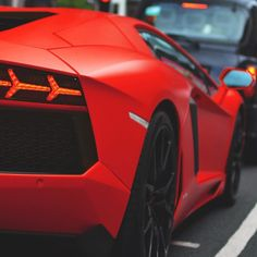 • Matte Red Bull  By : Unknown, Tag Photographer.
