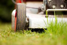 Die Qual der Wahl: Welcher Rasenmäher ist der richtige?