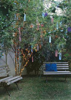 Estamos em uma época de reunir a família, com muito amor e festejar as festas, estamos no natal. E sempre gostamos de decorar nossos lares, com enfeites natalinos,aat como árvores, enfeites, luzinh…