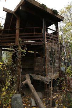 Brooklyn treehouse by Gennaro Brooks-Church
