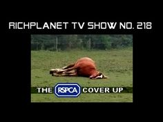 The RSPCA Cover Up - PART 4 OF 4. 7:28.  This phenomenon is proof that some aliens are definitely malevolent. (The decades of documenting the histories seem to reflect some kind of pleasure taken from the suffering of these mutilated animals). I think some of them use endorphins etc like crack addicts. Never give up your weapons (from the average citizen to the advanced military) EVER. My guess is this is a part of creating immune weapons for Earth.