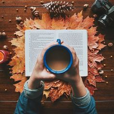 Flatlay Inspiration · via Custom Scene · Very Autumny! Make a simple scene into Autumn using leaves, pinecones and a candle. Flat Lay Photography, Autumn Photography, Book Photography, Photography Classes, Autumn Aesthetic Photography, Fashion Photography, Photography Hashtags, Christmas Photography, Photography Lighting