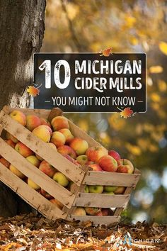 See our list of some of the lesser-known orchards to visit.