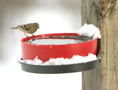 Using #solarpower is incredibly useful in this type of climate. Check out this Solar Sipper (solar powered heated bird feeder).