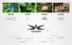 Nymphe (Concept) on Packaging of the World - Creative Package Design Gallery