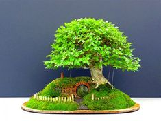 green design, eco design, sustainable design, Hobbit House, chris Guise, Hobbit Bonsai, bonsai trees, JRR Tolkein