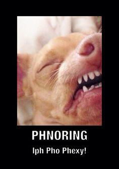 Phteven phnores!