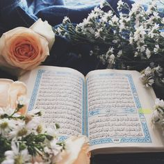 Learn the Quran online with flexible learning schedules with experienced tutors. #Quranforkids Provides Tajweed driven Online #QuranClasses for kids & adults. Get Free Trial Classes, 100% Satisfaction Guarantee & Discounts. Contact us now for more details. Islamic Wallpaper Hd, Quran Wallpaper, Quran Pak, Online Quran, Love In Islam, Islamic Paintings, Shocking Facts, Learn Quran, Good Deeds