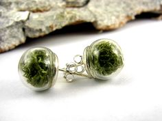 Sterling real moss earring studs. Stud earrings 925 sterling with tiny glass orbs filled with real moss.