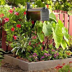 Do a mailbox makeover - Mailboxes should complement the home and express the homeowner's personality. Dress up mail boxes by painting the wooden post to match the house's exterior color, or by surrounding it by a beautiful flowering garden. Mailbox Garden, Mailbox Landscaping, Garden Landscaping, Mailbox Plants, Garden Privacy, Landscaping Design, Mailbox Makeover, Brick Edging, Wooden Posts