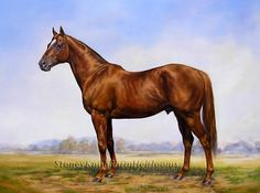 Man O'War Kentucky Thoroughbred Race Horse Cross Stitch Pattern