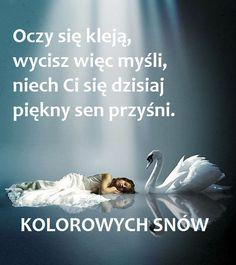 Good Night, Good Morning, Magic Day, Man Humor, Personal Care, Emoji, Quotes, Polish Sayings, Have A Good Night