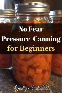 Let me show you how to can with a pressure canner with no fear! Lots of photos, step-by-step instructions! Let's can carrots! Pressure Canning Recipes, Canning Pressure Cooker, Canning Tips, Pressure Cooker Chicken, Home Canning, Pressure Cooker Recipes, Pressure Cooking, Canned Carrots, Low Acid Recipes