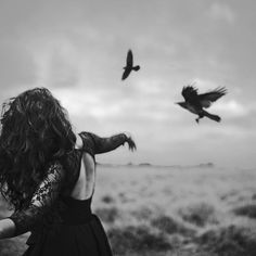 A bird doesn't sing because it has an answer, it sings because it has a song — Maya Angelou
