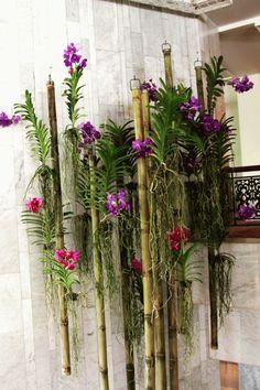 Mandarin Oriental Bangkok Hotel by floral genius Khun Ken Vanda Orchids, Orchids Garden, Purple Orchids, Garden Plants, House Plants, Air Plants, Hanging Orchid, Orchid House, Orchid Planters