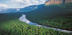 B&P_desde_Guayana: Arco Minero es una amenaza para la biodiversidad m...