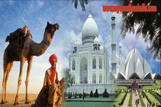 Rajasthan also known as the land of great emperors is a beautiful to visit. Here we are providing you with the Golden Triangle Vacation Package of Rajasthan at reasonable rates. For more information visit http://www.myvacationsindia.com/golden-triangle-india.html