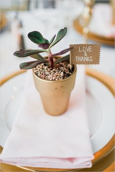 3 Ways to Use Succulents in Your Wedding — Emily Kay Weddings & Events