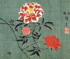 Fan Print:Rose by Utagawa Hirōshige
