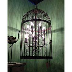original_bronze-twelve-light-birdcage-chandelier.jpg (900×900)