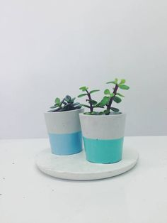 Pastel Dipped Cement Plant Pot