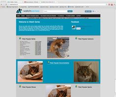 My ad blocker started putting pictures of lolcats instead of ads!!! (=^_^=)