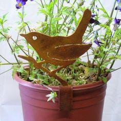 Rusty Bird in a garden plant.