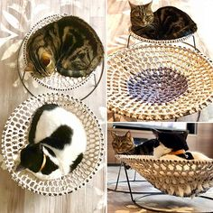 Interior examples such as hammock DIY / flower stand remake / flower stand cat bed / hammock / cat hammock | RoomClip (room clip) - Interior examples such as hammock DIY / flower stand remake / flower stand cat bed / hammock / cat - Gato Crochet, Diy Hammock, Cat Shelves, Japanese Nail Art, Flower Stands, Domestic Cat, Animal Fashion, Cat Furniture, Diy Stuffed Animals