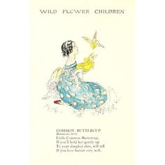 Wild Flower Children c1918 Common Buttercup Canvas Art - Janet Laura Scott (18 x 24)