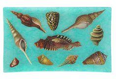9x12 Seashells Tray on OneKingsLane.com