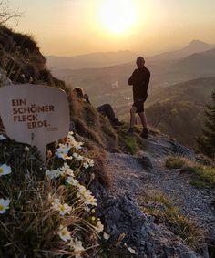 Den Sonnenaufgang am Berg genießen - das ist doch der beste Start in den Tag // good morning in the mountains Bergen, Spring Time, Mountains, Nature, Travel, Sunrise, Alps, Nice Asses, Naturaleza
