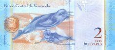 Pieza bbcv2bsf-ab01s (Reverso). Billete del Banco Central de Venezuela. 2 Bolívares Fuerte. Diseño A, Tipo B. Fecha Diciembre 19 2008. Serie D8. Billete tipo specimen
