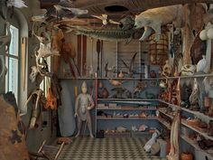 Photograph by Rosamond Purcell: wunderkammer