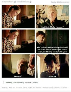there is only sherlolly.