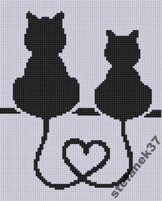 Zakochane Koty - kanwa